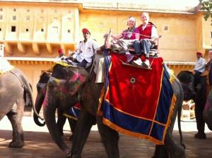 Elephant Back...